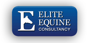 Elite Equine Consultancy